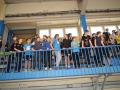 STZ Dobias Cup17150