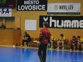 Lovo CUP 2013